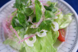 烏賊と三ツ葉のサラダ